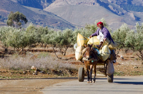 Atlas transport