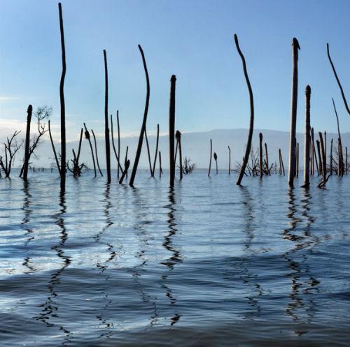 Lago Enriquillo 1