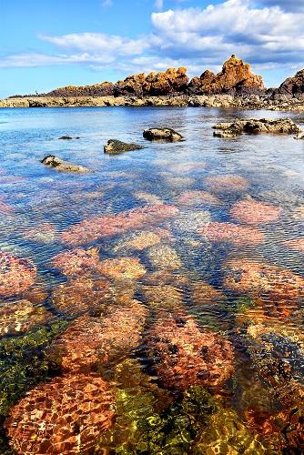 Starney Bay