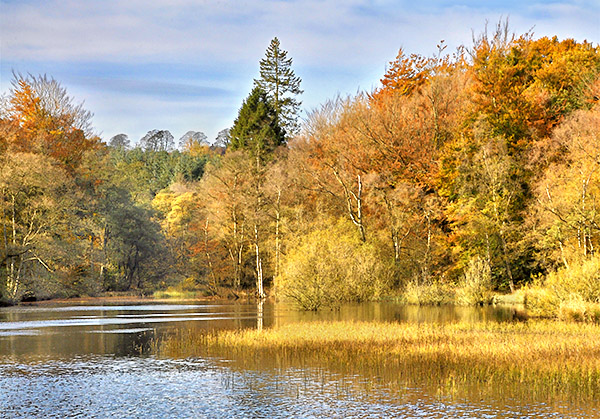 Washburn pond in Autumn