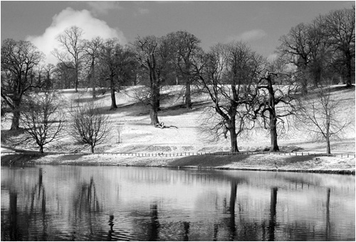 Winter at Studley Royal