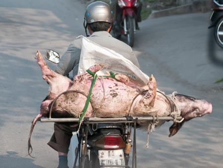 Hanoi Fast Food