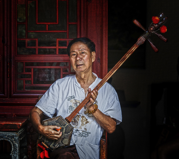 Sanxian player