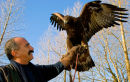 Pedro Soltani of the Golden Eagle Trust, Donegal, Ireland 2010