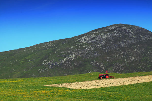 Northton Tractor