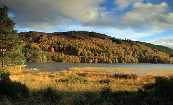Loch Pityoulish