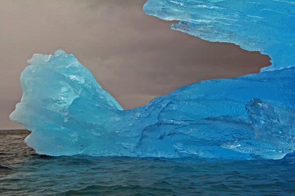 Blue Berg Tail, Napassorsuaq Fjord