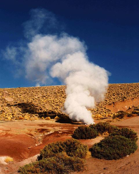 Desert Geyser - Atacama