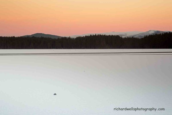 Loch Garten Sunset