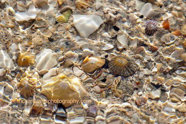 Shell Stream