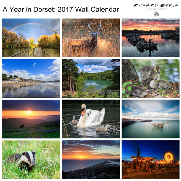 'A Year in Dorset' 2017 Wall Calendar