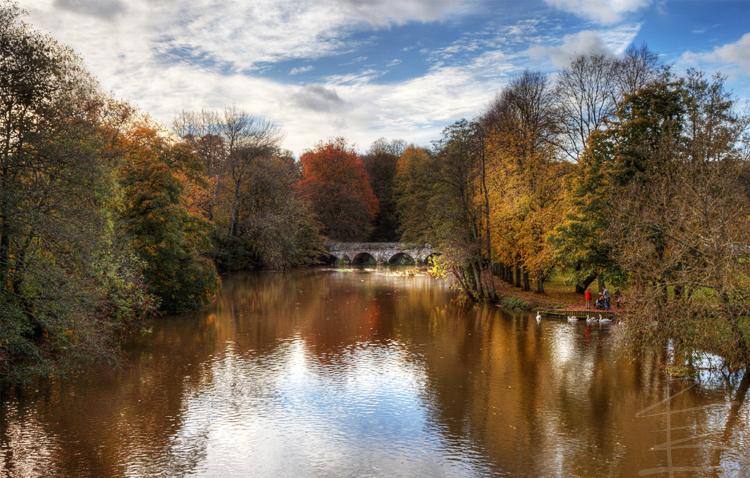 An Autumn Day in Blandford Forum