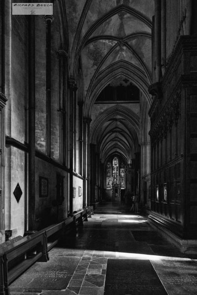 Shadows in the Cathedral