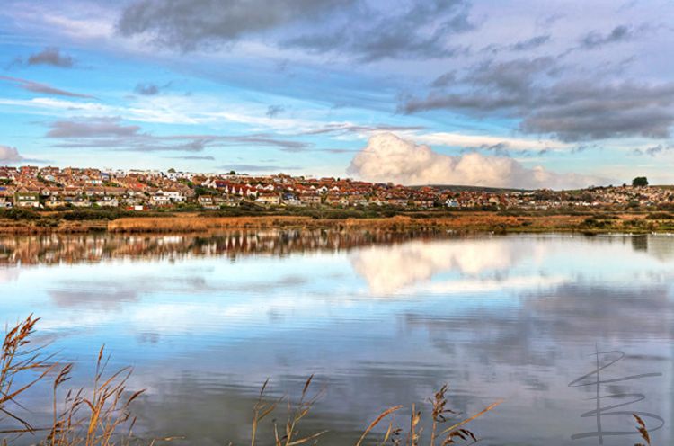Lodmoor Reflections