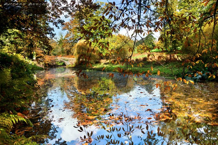 Autumn Reflections at Minterne Gardens