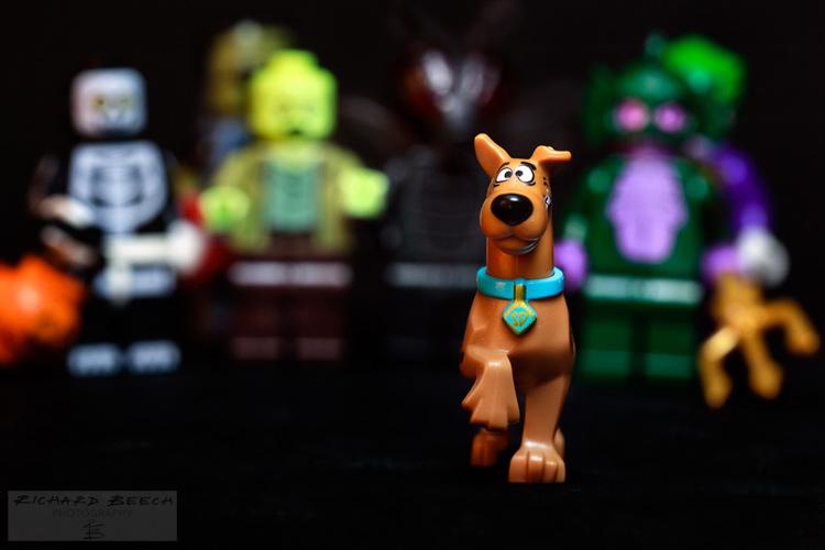 Run, Scooby, Run