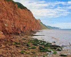 Sidmouth Cliffs