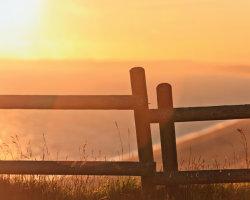 Fence over Chesil Beach