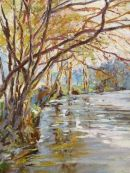 Dart at Staverton     SOLD and not in print