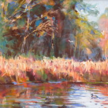 Stover Lake with bulrushes near Dartmoor