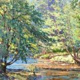 River Dart near Staverton