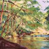 Spring on River Dart