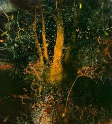 Michael Porter oil painting