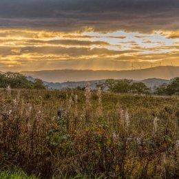 Setting Sun Across Fields