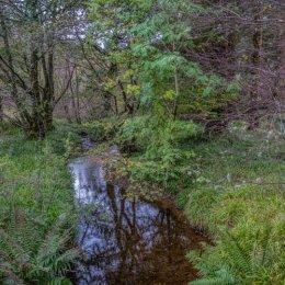 Inverary Castle Stream