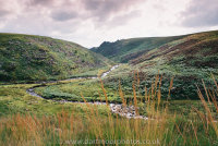 Tavy Cleave