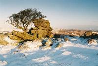 Emsworthy Rocks, first light with Houndtor