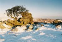 Emworthy Rocks