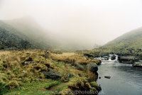 Tavy Cleave in mist