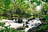River Teign Salmon Leap