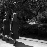 Nuns in London Zoo