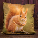 'All Fluffed Up' Red Squirrel