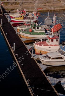Fiske Cutters