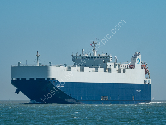 Viking Odessa-2