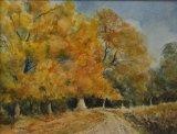 Autumn Trees, Richmond Park