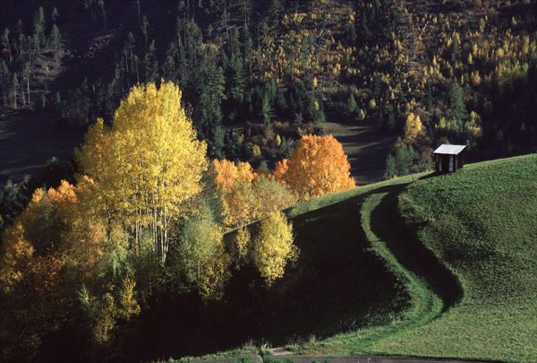 Alpine Autumn.