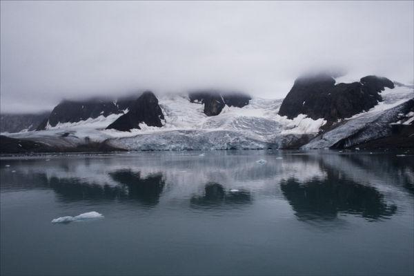 Arctic Whites.