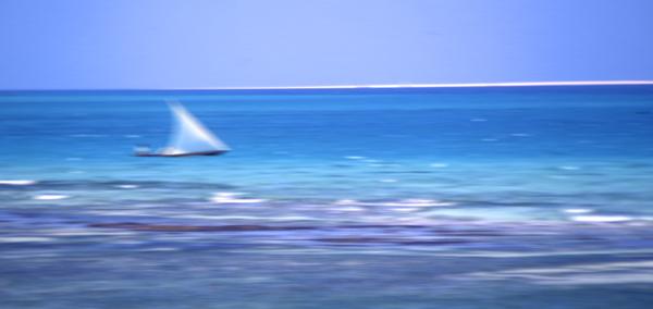 Blue Zanzibar.