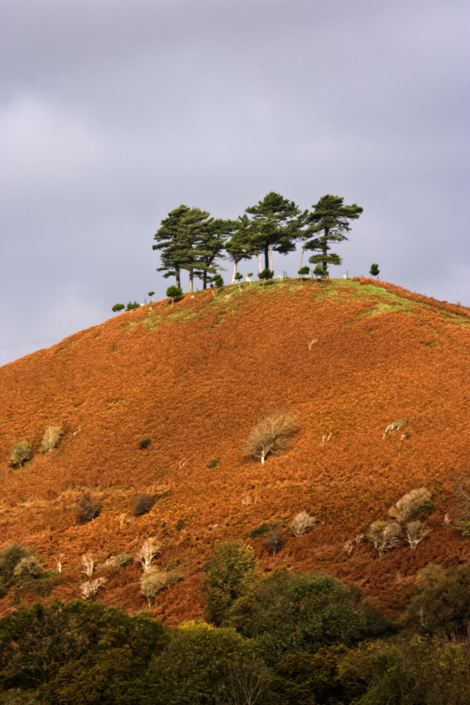 Colmar Hill