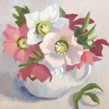 Pink Hellebores in a White Jug
