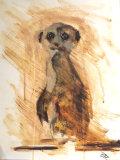'Meerkat' (Original) SOLD