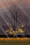 """Autumn Sycamore"" by Dan Crisp"