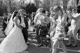 Wedding Photos178