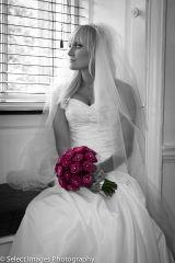 Wedding Photos317