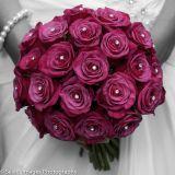 Wedding Photos318