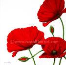 Poppies 3 - Acrylic on canvas
